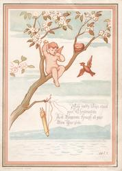 MAY MERRY JOYS ATTERND YOUR CHRISTMAS TIDE....NEW YEAR GLIDE cupid perched in tree having robbed bird nest, blossom above