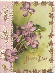 HAPPY DAYS In gilt below violets, designed floral margins