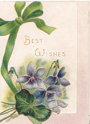 BEST WISHES in gilt above violets & leaf, printed green ribbon & bow left