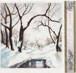 BEST WISHES on panel with holly right, buck & doe on snowy rural landscape, many trees surround