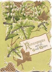 REMEMBRANCE AND ALL GOOD WISHES (R, G & W illuminated)on white plaque below cascades of ivy, green background & top perforated design