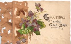 GREETINGS AND ALL GOOD WISHES(G'S &W illuminated), violets central, stylised brown ivy design left