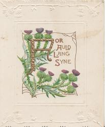 FOR AULD LANG SYNE(illuminated) on white plaque, purple thistles above & below