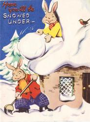 HOPE YOU'LL BE SNOWED UNDER rabbit rolls huge snowball from rooftop window to rabbit below, robin