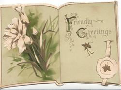 FRIENDLY GREETINGS (illuminated) right, white lilies left, pale green background, hidden watery rural inset, swans