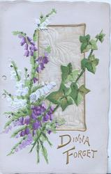 DINNA FORGET in gilt below purple & white campanulas with ivy in front of silver plaque