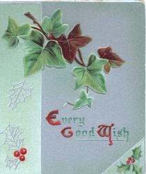 EVERY GOOD WISH (E,G & W illuminated) below ivy, silver background & green design on left