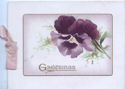 GREETINGS in gilt, single purple pansy on plaque