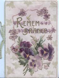 REMEMBRANCE in gilt above & among purple pansies
