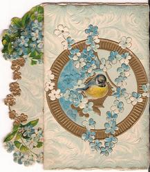 no front title, bird sits in centre of gilt circle surrounded by forget-me-nots