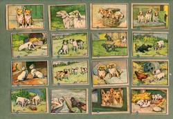 OUR FRIEND THE DOG puzzle cards to advertise PALETTE PAINTING BOOKS