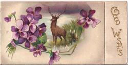 GOOD WISHES stag stands in tall grass, surrounded by exaggerated violets