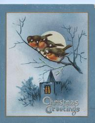 CHRISTMAS GREETINGS, moonlit view, 3 bluebirds of happiness(or perhaps English robins) perched above rural church