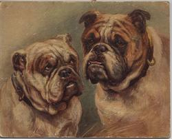 """DARBY AND JOAN"" (title on reverse), two bulldogs"