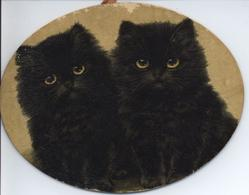 TWICE LUCKY! two black cats with yellow eyes