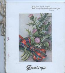 GREETINGS below thistles & tartan bow, top:-MAY GUID LUCK HIT YOU, AND MANG HER FAVOURITES ADMIT YOU.