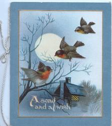 A SONG AND A WISH 3 birds of happiness perhaps English robins, moonlit  rural view, light in cottage window