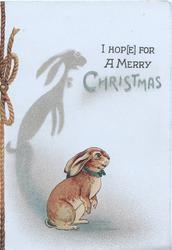 I HOP(E) FOR A MERRY CHRISTMAS rabbit stands on bask legs facing right, prominent shadow