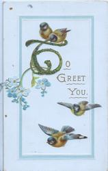 TO GREET YOU(T illuminated & glittered) ,inset small sprig of forget-me-nots & 4 bluebirds of happiness