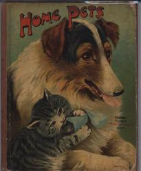 HOME PETS collie dog and grey kitten