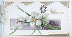 GOOD WISHES(G & W illuminated) in gilt upper right above 3 narcissi, violet inset below