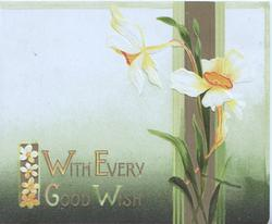 WITH EVERY GOOD WISH in gilt lower left on green background, 2 narcissi over vertical design right