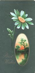 BEST WISHES in gilt below left, vertical oval watery rural inset right, greeen daisy with orange centre, dark green background