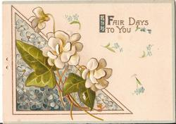 FAIR DAYS TO YOU (F) illuminated, various flowers and large ivy leaves to the right