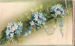 WISHES TRUE in gilt, bunches of forget-me-nots