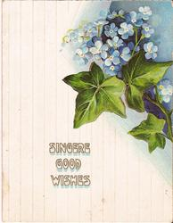 SINCERE GOOD WISHES ivy and forget-me-nots in the top right