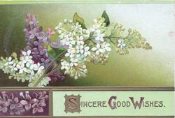 SINCERE GOOD WISHES(S,G, & W illuminated) in gilt below white & purple lilac, background shades of green