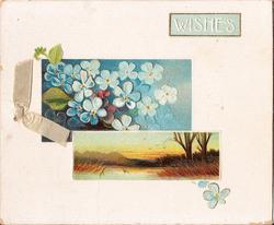 WISHES inset of forget-me-nots above inset of nature scene