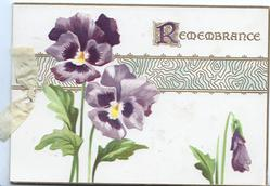 REMEMBRANCE(illuminatedR) in gilt above 2 purple pansies & a bud, horizontal gilt design
