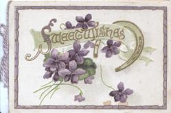 SWEET WISHES in gilt above violets & lucky hoseshoe, gilt border
