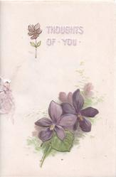 THOUGHTS OF YOU in white & purple above violets & small leaf