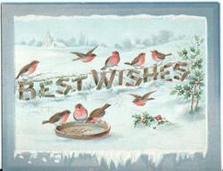BEST WISHES nine robins , holly to the right