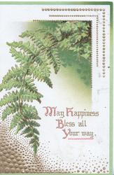 MAY HAPPINESS BLESS ALL YOUR WAY(illuminated) below green fronds of fern