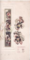THOUGHTS OF YOU below white/purple pansies others in gilt bordered inset left