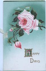 HAPPY DAYS(H illuminated) in gilt below pink rose & 2 buds , white & green background