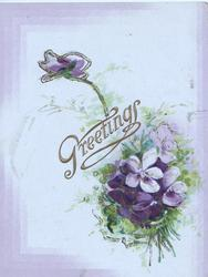 GREETINGS in gilt above, bunch of violets