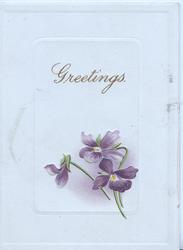 GREETINGS in gilt above 3 violets