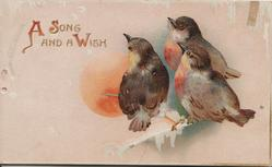 A SONG AND A WISH 3 birds of happiness perhaps English robins, moonlit  winter view