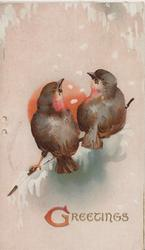 GREETINGS in gilt below 2 birds of happiness facing away & perched on twig in front of winter sun