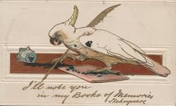 I'LL WRITE YOU IN MY BOOKE OF MEMORIES white cockatoo writes card title with feather pen, ink