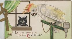 LET US HAVE A HAPPY CHRISTMAS white cockatoo & black cat talk to each other through window
