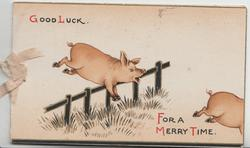 GOOD LUCK  2 pigs jump fence FOR A MERRY TIME