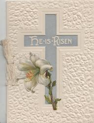 HE IS RISEN in white on silver cross cross, lily below, deeply embossed white background