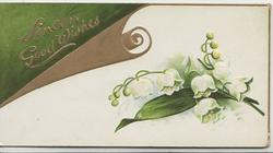 SINCERE GOOD WISHES in gilt on green & gilt scroll above lilies-of-the-valley