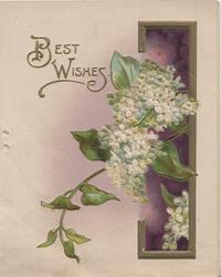 BEST WISHES in gilt above white lilac over gilt bordered purple inset right
