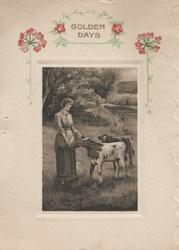 GOLDEN DAYS in gilt above inset woman feeding 2 calves, watery rural background